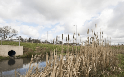 Highways England to investigate link between road water and microplastics